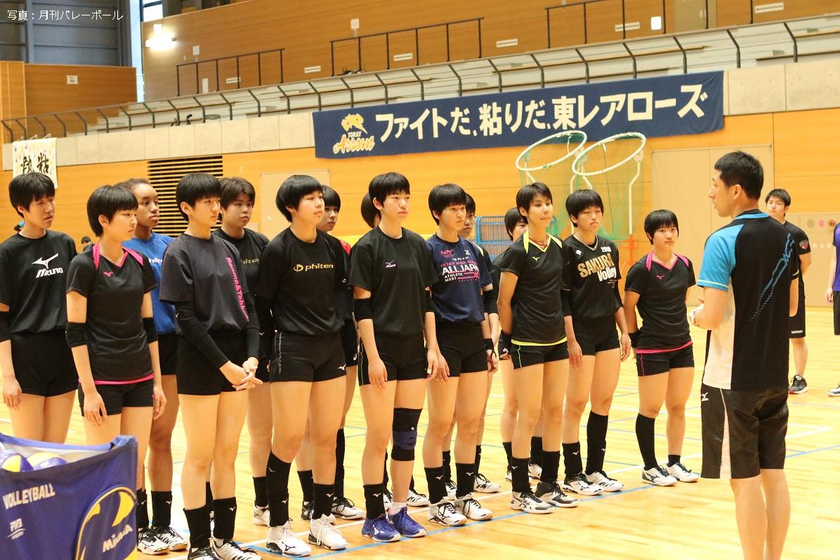 2019 メンバー 女子 バレー 全日本