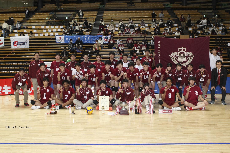 部 バレー 早稲田 大学